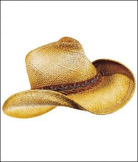 12. THE STRAW HAT.jpg