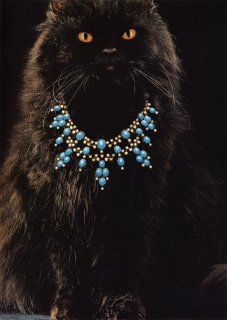 vogue_paris_may_1980_cat.jpg