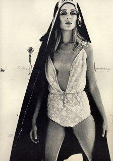 british_vogue_april_1_1966__newton2.jpg