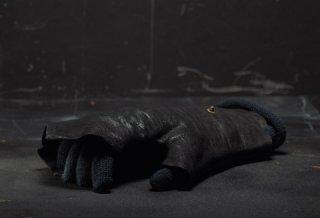 gloving-black[1].jpg