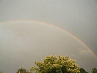 Candys Rainbow 3.JPG